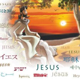 """Capa do Livro """"Jesus"""""""