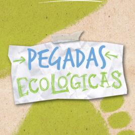 """Capa do Livro """"Pegadas Ecológicas"""""""